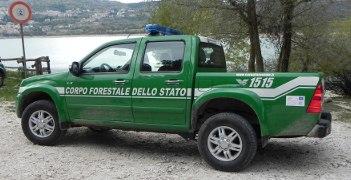 Porrello: Presidente e giunta evitino scioglimento corpo forestale